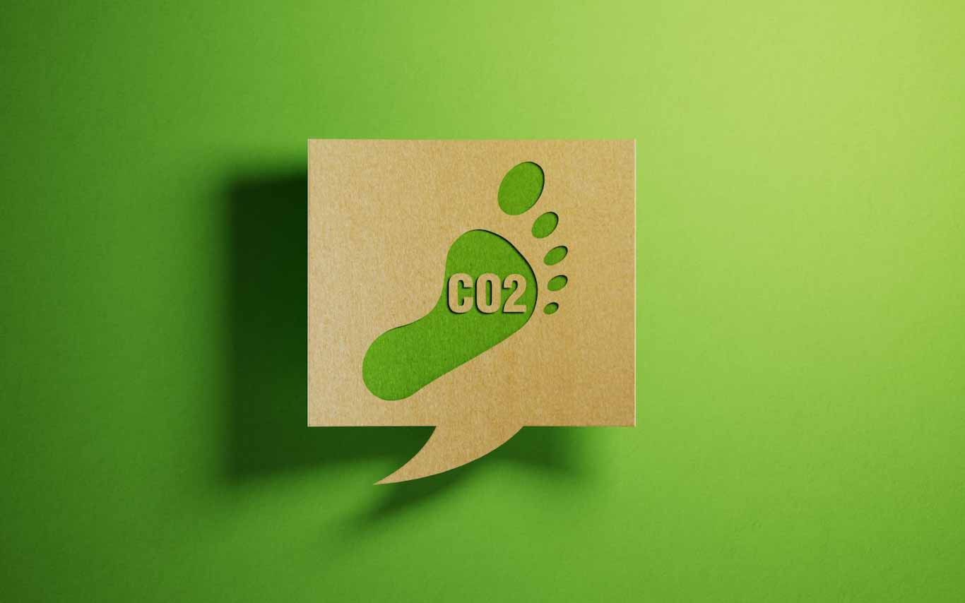 Carbon Footprint (002)